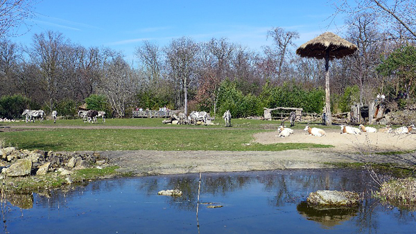 Leipzig, im Rosenthal, Zoo-Schaufenster-B, looking north, 15.04.2013