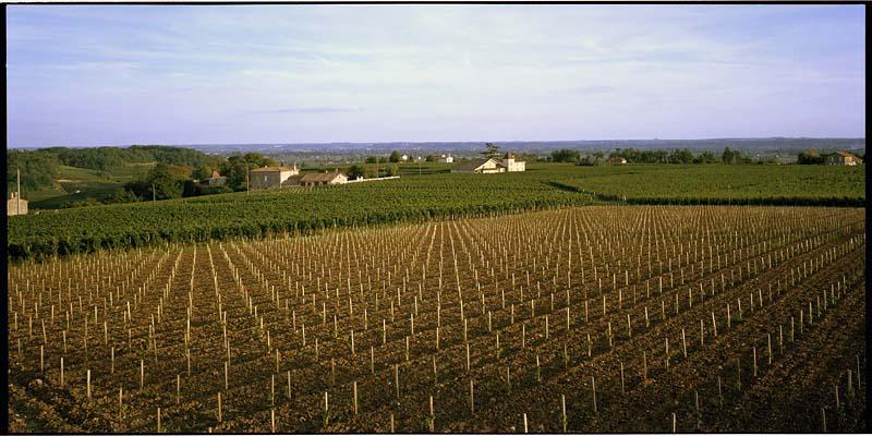 Saint Émilion, sorrounds, looking south, 2004