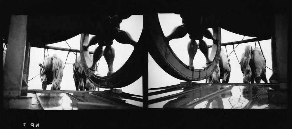 BERLIN, Quadriga, Brandenburger Tor      MAXI 200 x 277cm    DIASEC@GRIEGER