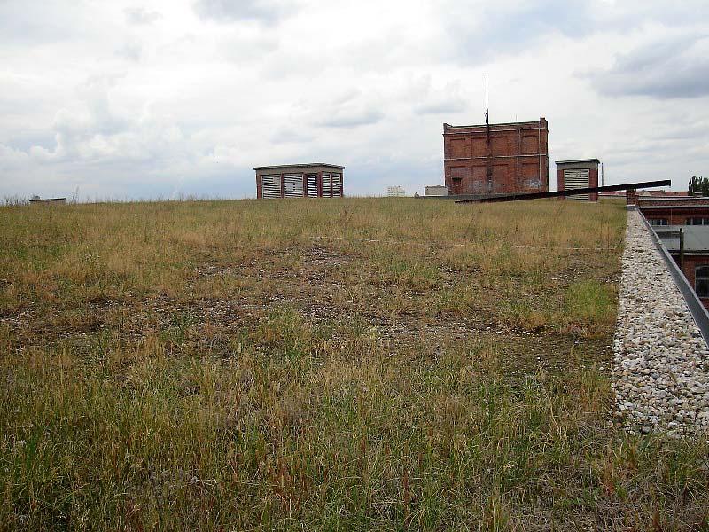 SPINNEREI, HALLE 14, DER HERBST KOMMT WENN DER SOMMER GEHT, 12.09.2012