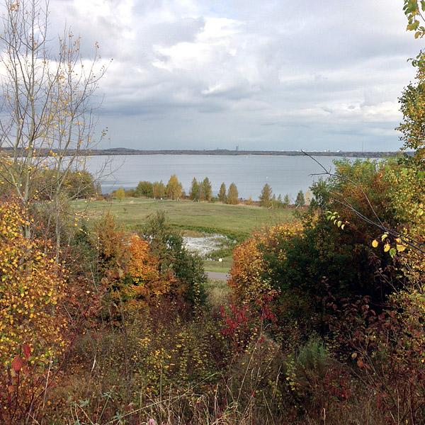 LEIPZIG, auktoriale Perspektive, Bistumshöhe, looking north, 24.10.2013