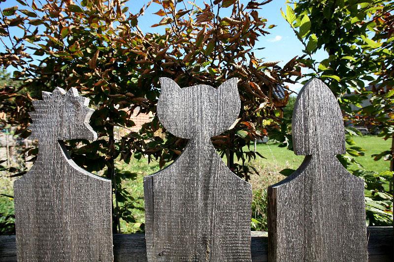 KAHNSDORF, FUCHS, KATZE UND ELSTER, 28.09.2012