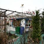 DRESDEN, FRIEDRICHSTADT, DER WETTERHAHN, 20.02.2007