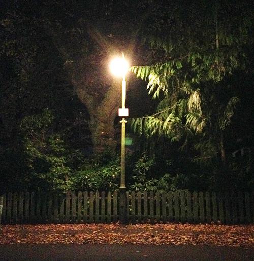 Stillharren, Zwiegespräch mit einer Laterne, 14.11.2014