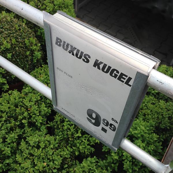 FAMOOS-TOOM-BUXUS, 16.05.2015