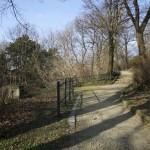 MAGDEBURG, GESCHWISTER-SCHOLL-PARK, WEG AM HANG, Ans.n.Nord, 22.03.2012