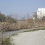 LEIPZIG, HAFENBECKEN IM SÜDEN, 24.03.2012