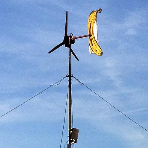 LEIPZIG, Jahrtausendfeld, Banane war hier, 02.11.2014