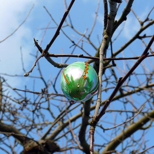 Klingers Weinberg, Grünes SchmückEi im Apfelbaum, 30.03.2013
