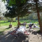 LEIPZIG, VILLA HASENHOLZ, Garten nach WEST, 19.04.2015