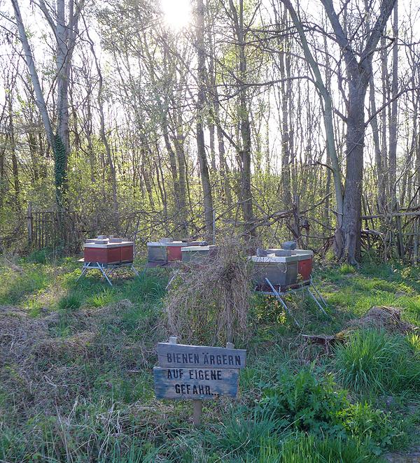 Leipziger Pioniergeist - Honigschmiede: Salone del Mobile, city bees keeping, 19.04.2015